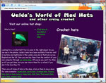 madhats.net uses basic web site hosting